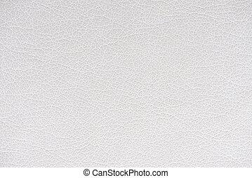 seashell, fondo, struttura, cuoio