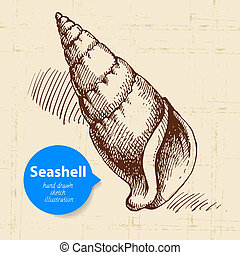 Seashell hand drawn sketch. Vintage illustration
