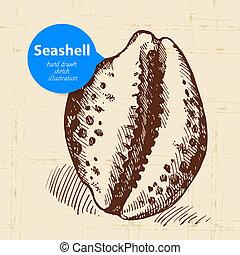 Seashell hand drawn sketch. Vintage illustration