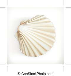 Seashell, icon