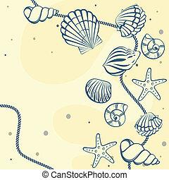 seashell, kaart