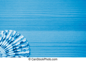 Seashell on a wooden background close up. Blue color toned