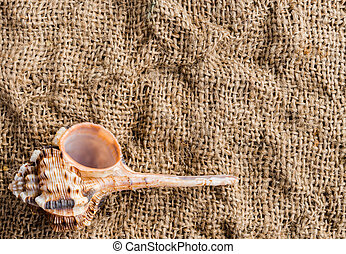 seashell on the background of burlap with copy space for text.