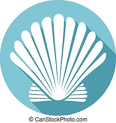 seashell, (sea, shell), appartamento, icona
