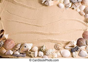 seashell, spiaggia, cornice