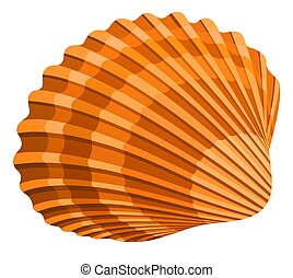 Seashell - illustration of seshell isolated on white