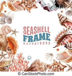 seashell, ułożyć, realistyczny