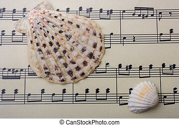 Seashells and paper with musical notes
