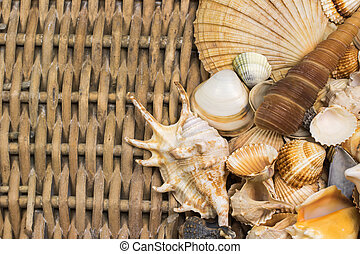 Seashells  are lying  in the right side of old wicker baket.