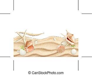 Seashells background - Seashells on sand, background