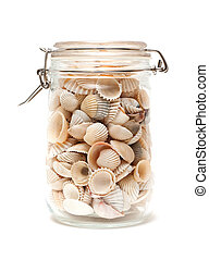 seashells, bottiglia, vetro