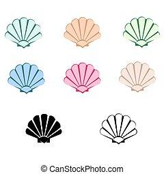 seashells, coloré