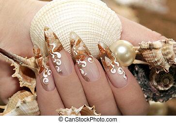 seashells., conception