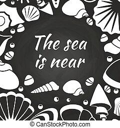 seashells, conception, tableau, affiche