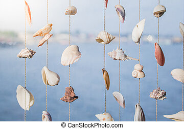 Seashells hanging on strings for decoration