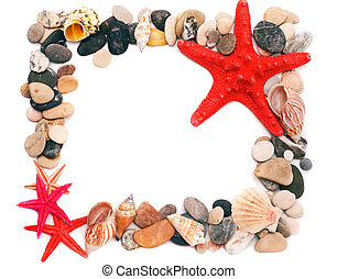 Seashells on sand picture frame