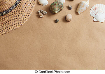 Seashells on wooden background with copyspace. travel concept