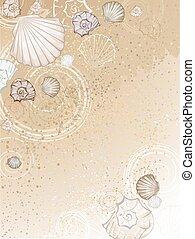 seashells, sand
