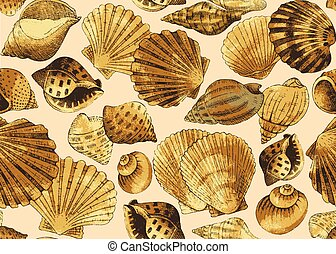 seashells., seamless, fondo