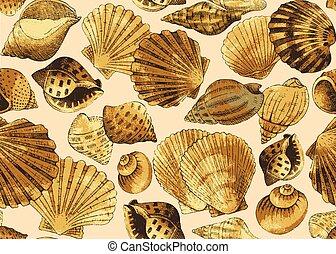 seashells., seamless, fundo