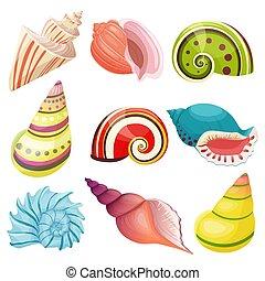 seashells, set., vecteur