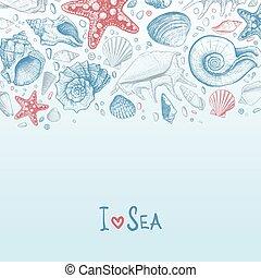 seashells, tło