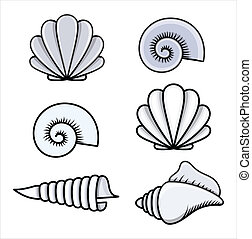 seashells, vettore, -, cartone animato