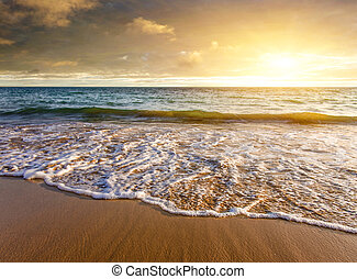Beautiful seashore in a beach with cloudy sky at sunset