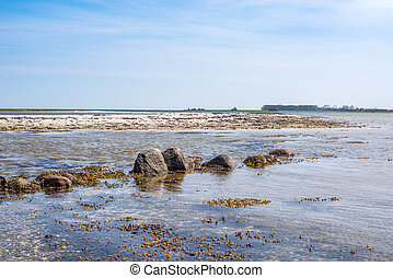 Seashore with rocks in the water