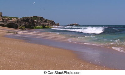 Seashore with waves and sky - A full shot of a seashore and...