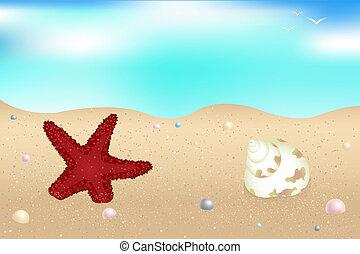 Seaside - Starfish, Shells And Pearls Over Sand
