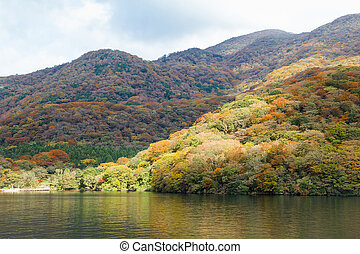 Lake Ashi, Autumn Landscape with colorful forest