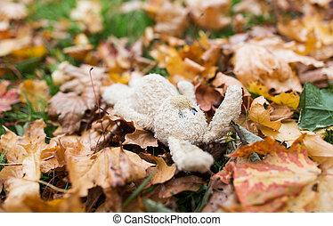 toy rabbit in fallen autumn leaves