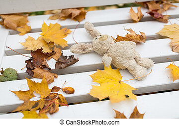 toy rabbit on bench in autumn park