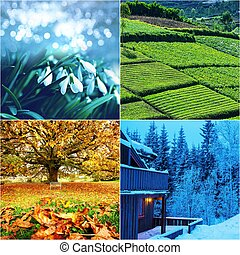 Season collage