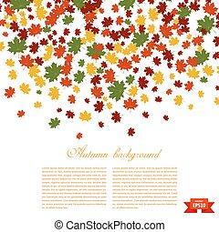 season., imagem, leaves., ilustração, outono, experiência., verde, amarela, queda, maple, vermelho