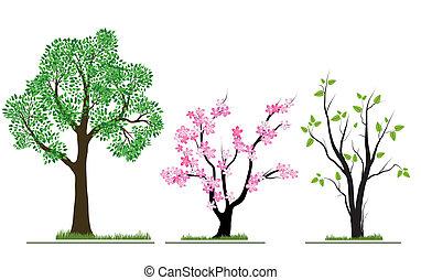 Season nature trees set