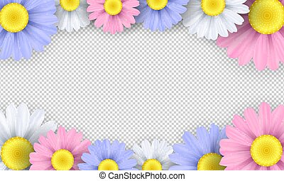 Seasonal background. Colorful chamomile flowers on a transparent background. Template for your design. Vector illustration
