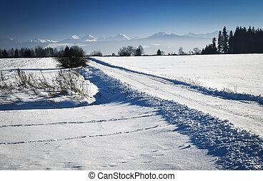 road through winter landscape