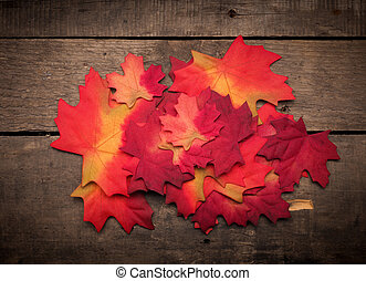 Seasonal background with colorful leaves