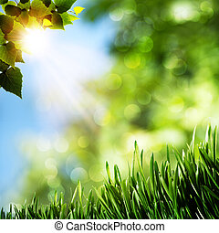 Seasonal natural backgrounds with green grass and beauty bokeh