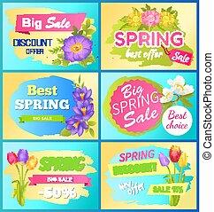 Seasonal Offer Spring Sale Advertisement Flowers