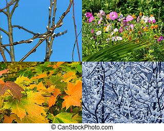 Seasons background