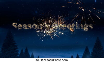 Animation of the words Seasons Greetings in sparkling letters with fireworks in the background
