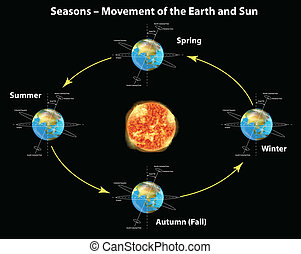 Seasons - Illustration showing the seasons of the earth