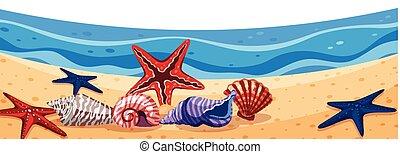 seastars, 浜, 風景, 背景