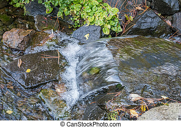 Seatc Stream