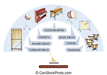 Seating Chart of Percussion Instrument for Symphonic Band -...