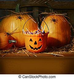 seau, halloween, rempli, bonbon