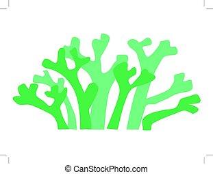 seaweed - silhouette of seaweed